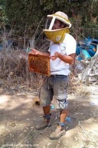 beekeeper-550x825