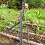 ציוד השקיה לגינת ירק